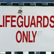 Stock Photo: Lifeguards Only
