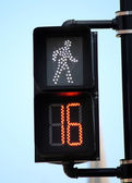 Pedestrian Signal 2 — Stock Photo