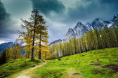 Alps mountains in northern Slovenia — Stock Photo