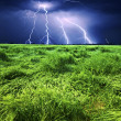 Storm over wheat field — Stock Photo #20055961