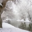 Winter lake landscape — Stock Photo #20056579