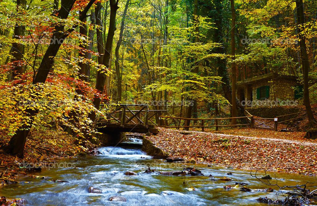 秋天的公园