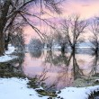 Winter landscape river Zagyva — Stockfoto