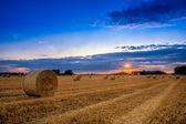 Einde van dag over veld met hooi baal in hongarije-deze foto maken — Stockfoto