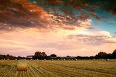 Slutet av dagen över fältet med höbalen i ungern — Stockfoto