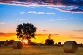 End of day over field with hay bale in Hungary — Stockfoto