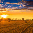 Stock Photo: Sunset over hay bale field