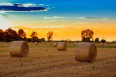 Sunset over the hay bale field — ストック写真