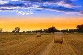 Sunset over the hay bale field — Stock Photo