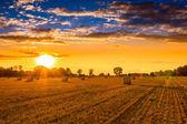 закат над полем тюков сена — Стоковое фото