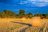 Sunset over the hay bale field — Стоковое фото