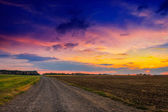 Road in meadows and beautiful sunset — Stock Photo