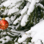 Christmas decorating — Stock Photo #2802736