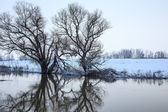 Winter river landscape — 图库照片
