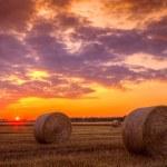 zonsondergang over boerderij veld met hooibalen — Stockfoto #48320975