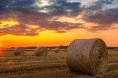 Sunset over farm field with hay bales — Stock Photo