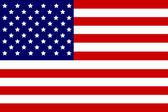 USA Flag, Illustration — Stock Vector