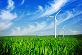 Wind energy turbines on the field — Stock Photo