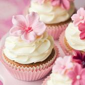 Bloem cupcakes — Stockfoto