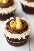 Paskalya piliç cupcakes — Stok fotoğraf