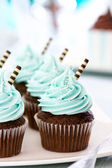 Chocolate cupcakes — Stockfoto
