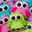 Owl cookies — Stock Photo #40425383