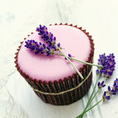 Lavender cupcake — Stock Photo