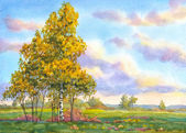 Watercolor landscape. The trees in the evening field — Stock Photo