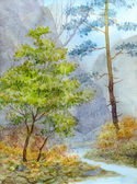 Watercolor landscape. Mountain brook in autumn forest — Stock Photo