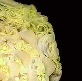 Abstract background of frizz leaves on the cut cabbage — Stock Photo