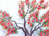 Watercolor background. Red flowers of spring tree — Stock Photo