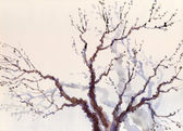 Watercolor landscape. The bare branches of a tree — Stock Photo