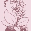 Vector outline drawing. Flowering branch of spotted orchid in va — Vector de stock #31990503
