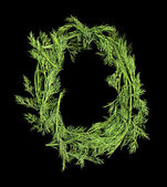 Vegetable Alphabet of sprigs of dill. Letter O — Stock Photo