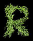 Vegetable Alphabet of sprigs of dill. Letter R — ストック写真