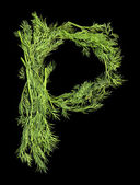 Vegetable Alphabet of sprigs of dill. Letter P — Stock Photo