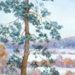 Watercolor landscape. Pine tree in the winter steppe — Stock Photo #37869127