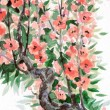 Watercolor background. Spring blooming of an old tree — Fotografia Stock  #38038031