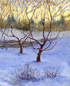 Watercolor rural landscape. Winter garden — 图库照片