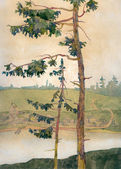 Watercolor landscape. Pines on the river bank — 图库照片