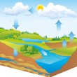 Vector schematic representation of the water cycle in nature — Stock Vector #39781553