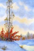 Watercolor winter landscape. Tall poplar on the hill — Photo