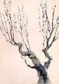 Watercolor painting. Bare branches of an old tree — Stock Photo