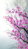 Watercolor painting. Branches of blossoms cherry — Stock Photo