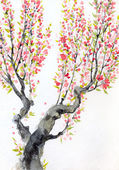 Watercolor spring background. Red flowers on tree branches — Stock Photo