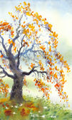 Watercolor landscape. Old autumn tree in foggy day — Stock Photo
