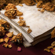 Background in retro style. Dry roses scattered on old book — Stock Photo