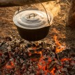 Cast iron pot on the fire burning logs — Stock Photo #51170031