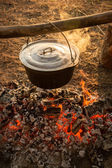 Cast iron pot on the fire burning logs — Stock Photo