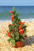 Christmas tree on the beach — Stock Photo